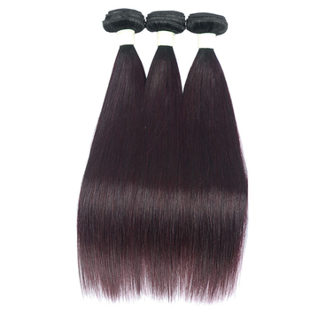 Vvwig Virgin Hair 1B Grape Purple Ombre Hair Malaysian 3 Bundles With Closure Double Weaving Straight Hair